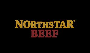 northstar300
